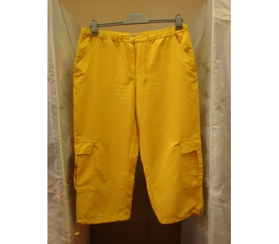 0491 Dámské šortky Boysen